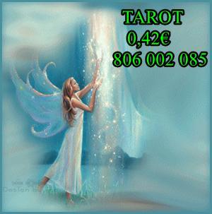 Tarot barato y económico 0.42 AMOR DE ANGEL 806 002 085