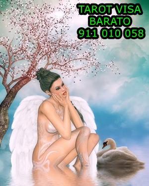 Tarot Visa barato 5 fiable Graciela grandes videntes 911 010 058