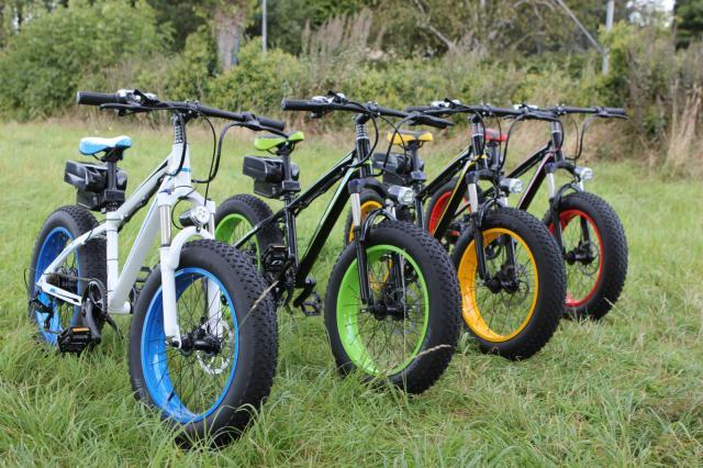 Alta calidad a estrenar 20 Fat Neumáticos bicicleta eléctrica