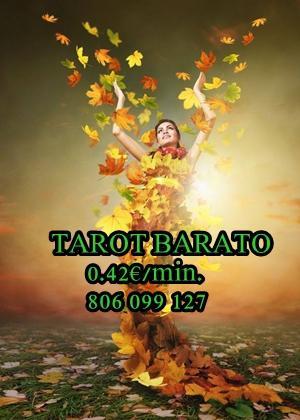 Tarot barato fiable 0.42 ALEJANDRA 806 099 127 -911 010 058