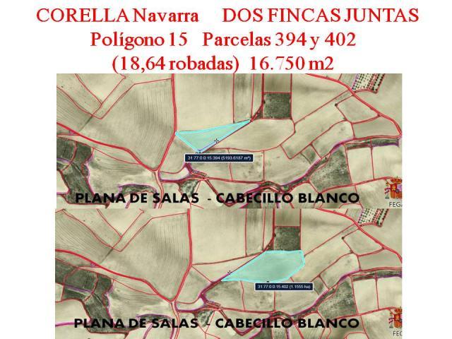 FINCAS AGRÍCOLAS EN CORELLA NAVARRA