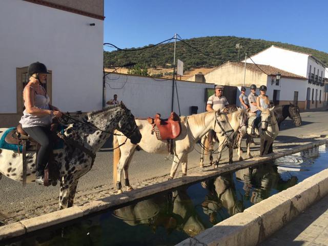 se organiza rutas a caballo en la Sierra Norte de Sevilla.