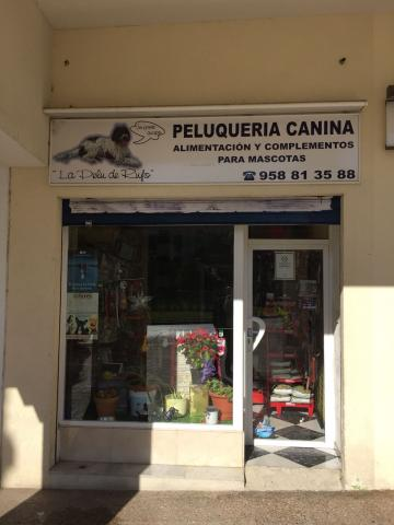 TRASPASO DE PELUQUERIA CANINA