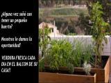 Venta de plantas online en Barcelona, El Jardín en Su Puerta