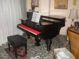 Piano de cola Hornung & Moller color negro