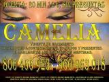 Vidente Camelia, sin preguntas, sólo la verdad. Tarot 806 466 923